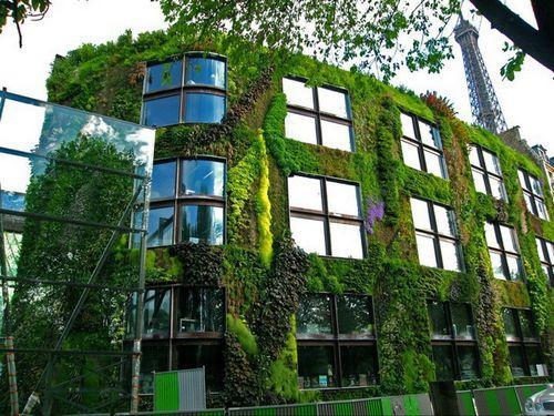 Фасады из растений в Париже
