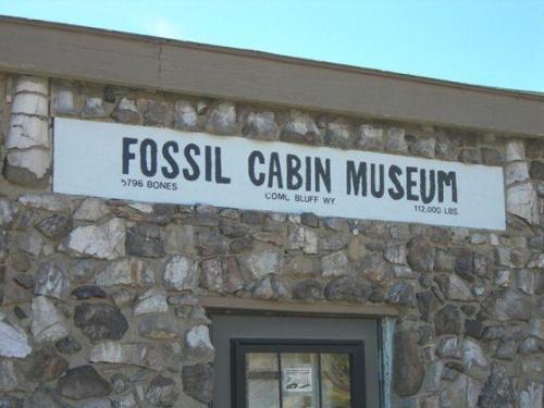 Уникальный дом из костей динозавров
