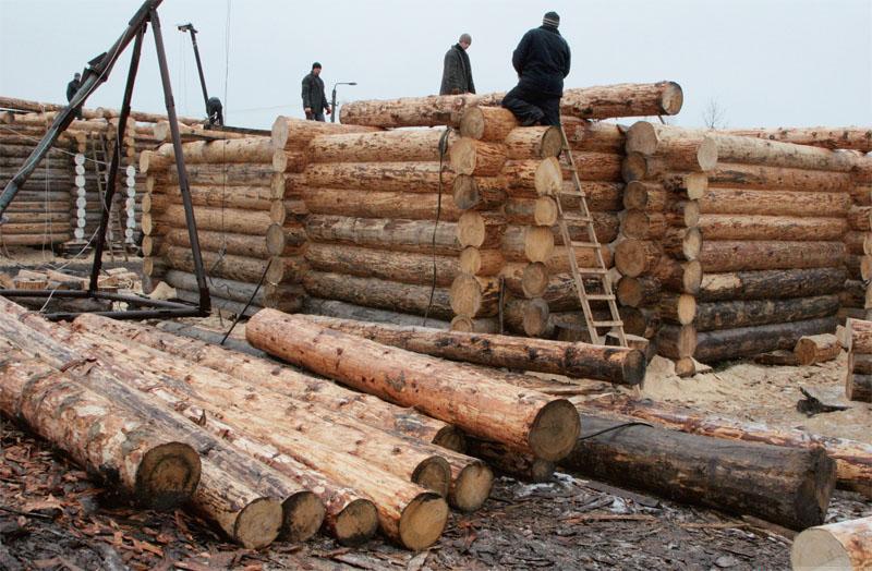 Сруб создают на территории предприятия, а завершается его строительство на участке застройщика. Стены собирают рядами венцов, которые образуют сруб: бревна кладут одно к одному, и каждый последующий ряд учитывает неровности и особенности предыдущего. Отборные карпатские бревна карпатских смерек подбираются поштучно и обрабатываются вручную специальными инструментами. Жесткое сцепление бревен обеспечивают деревянные колышки на два или три бревна — нагели.