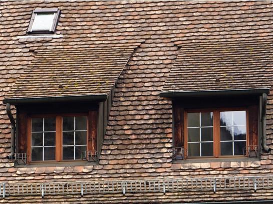 С односкатной крышей