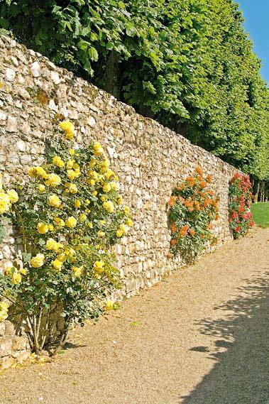 Каменный забор для участка