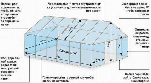 Два способа выращивания вешенок на даче