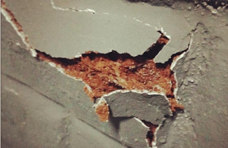 Как бороться с грибком и плесенью на стенах в подвале?