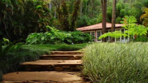 Сад в японском стиле: основные черты