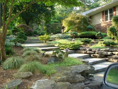 Создание сада – перед выбором растений