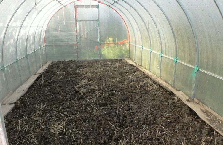 Как подготовить почву к зиме в теплице и открытом грунте
