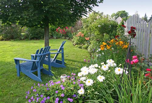 Какие цветы посадить весной?